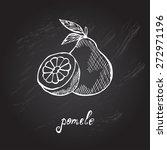 hand drawn decorative pomelo... | Shutterstock .eps vector #272971196