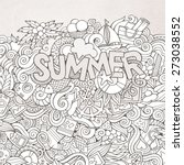 summer hand lettering and... | Shutterstock .eps vector #273038552