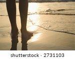 caucasian person standing... | Shutterstock . vector #2731103