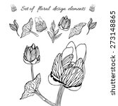 set of hand drawn floral design ... | Shutterstock .eps vector #273148865