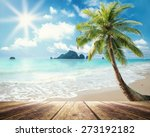 the beach. vintage style wooden ... | Shutterstock . vector #273192182