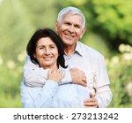 latin american and hispanic... | Shutterstock . vector #273213242