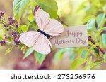 Syringa Nature Greeting Card...