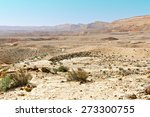 Canyon In The Judean Desert On...