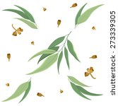 eucalyptus leaves and seeds... | Shutterstock .eps vector #273339305