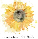 Sunflower With Splashes. Vecto...