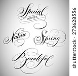 calligraphic lettering of words ... | Shutterstock .eps vector #273628556