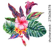 watercolor tropical flowers and ... | Shutterstock . vector #273636578
