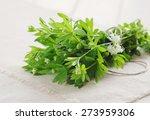 fresh woodruff | Shutterstock . vector #273959306