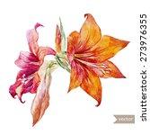 Beautiful Watercolor Flowers...