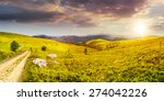 composite image of panoramic mountain landscape.  winding road on hillside meadow, few stones and trees along the road. conifer forest far away on mountains in sunset light - stock photo