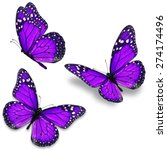 three purple monarch butterfly...   Shutterstock . vector #274174496