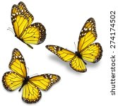 Stock photo three yellow monarch butterfly isolated on white background 274174502