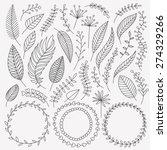 Vector Hand Drawn Leaves Set....