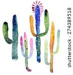 Watercolor Cactus Set. Object...