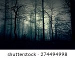 Dark Blue Forest With A Magical ...