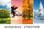 four seasons collage  several... | Shutterstock . vector #274637648