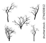 Dead Tree Branch Vector...