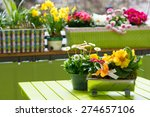 Flowers On A City Balcony