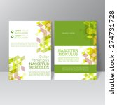vector brochure template design ... | Shutterstock .eps vector #274731728
