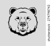vector illustration of grizzly...