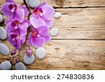 pink orchid with buds. greeting ...   Shutterstock . vector #274830836
