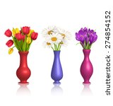 tulips chamomiles and crocuses... | Shutterstock .eps vector #274854152