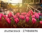 Stock photo tulips and bicycles on a street near a canal in amsterdam the netherlands 274868696