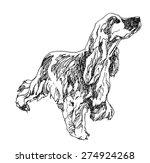 English Cocker Spaniel Dog....