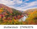 beautiful valley mountain hill... | Shutterstock . vector #274963376