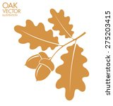 oak. branch. vector illustration | Shutterstock .eps vector #275203415