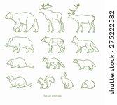 forest animals | Shutterstock .eps vector #275222582