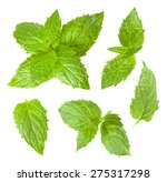 collection of mint leaves... | Shutterstock . vector #275317298