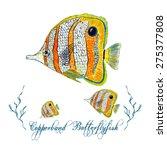 Watercolor Butterflyfish ...