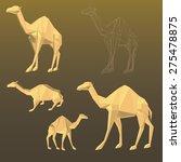 vector camel   Shutterstock .eps vector #275478875