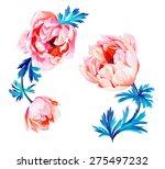 Anemone Flowers Illustration....
