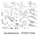 Branches And Leaves. Black And...