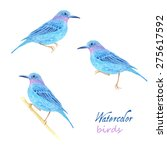 watercolor bird collection for... | Shutterstock .eps vector #275617592
