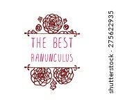 the best ranunculuses....   Shutterstock .eps vector #275622935