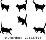 Cats Collection 2 Vector