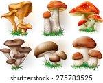 vector illustration of various... | Shutterstock .eps vector #275783525