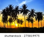 Silhouette Of Coconut Palm...