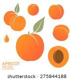 apricot. fresh fruit on white... | Shutterstock .eps vector #275844188