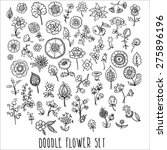 hand drawn floral elements ... | Shutterstock .eps vector #275896196