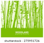 woodland eco banner. can be... | Shutterstock .eps vector #275951726