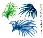 3 vector palm leaves. realistic ... | Shutterstock .eps vector #275954372