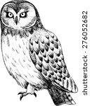 vector owl  2. white and black. | Shutterstock .eps vector #276052682