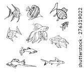 Pen Sketch Of Fishes.