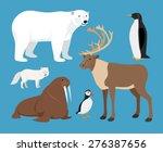 Set Of Arctic Animals