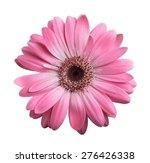 pink gerbera daisy isolated on... | Shutterstock . vector #276426338